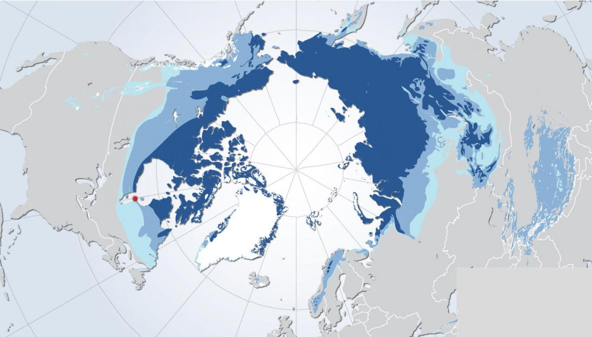 Permafrost extent in the northern hemisphere 1266