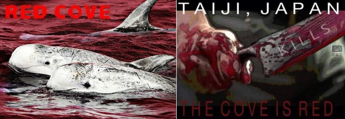 Taiji the cove is red