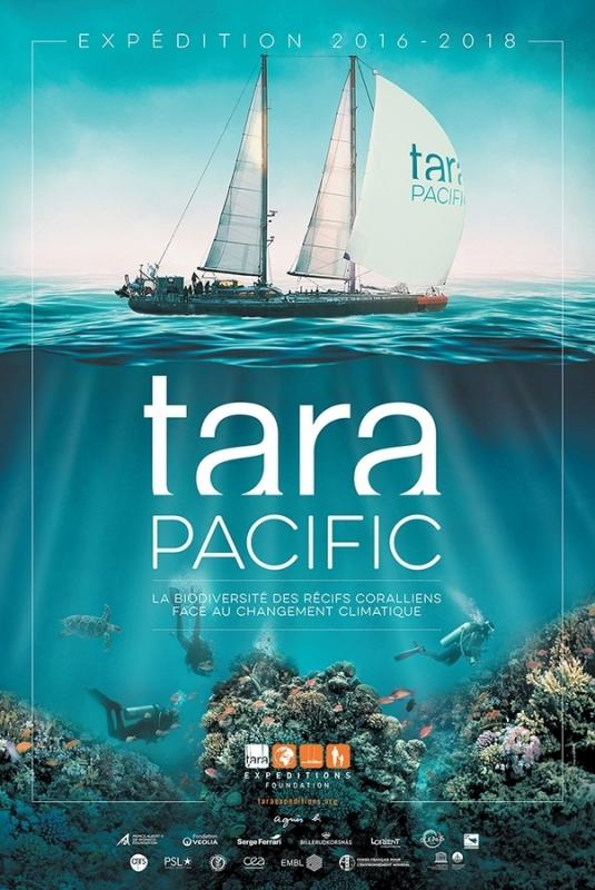 Tara expedition fileminimizer