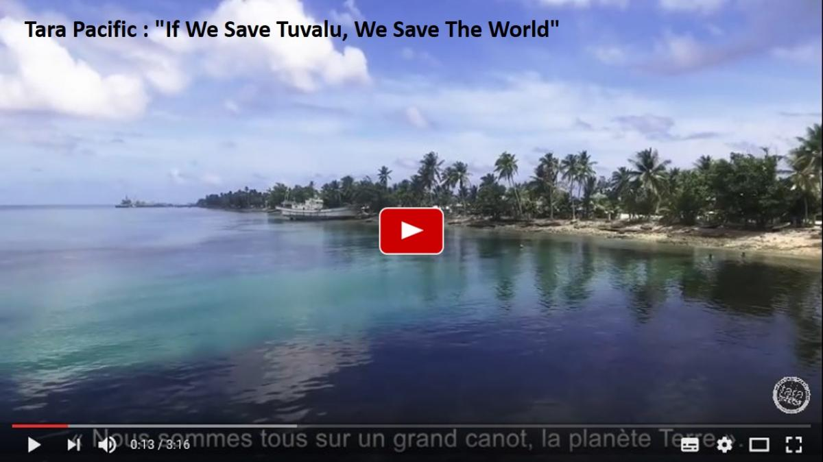 Tara pacific if we save tuvalu we save the world
