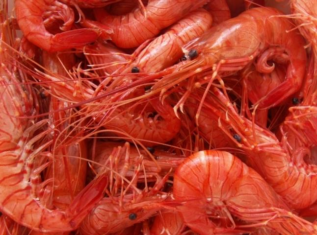 Crevettes au naturel fileminimizer