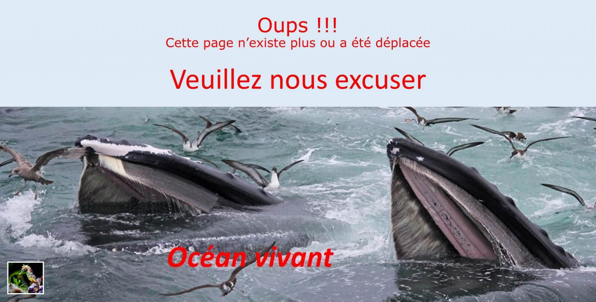 Oups !!!
