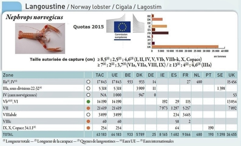 Quotas langoustine 2015 2 fileminimizer