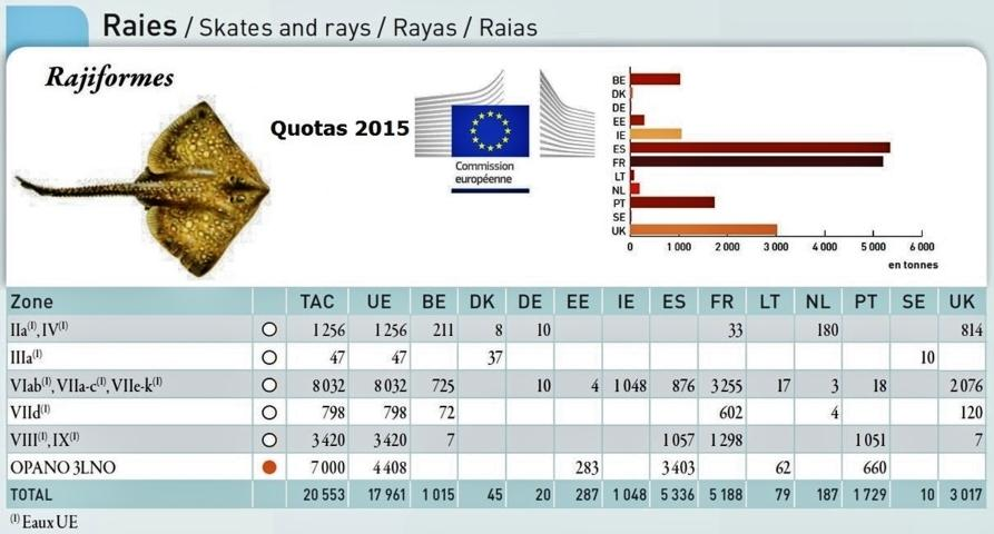 Quotas raie 2015 fileminimizer