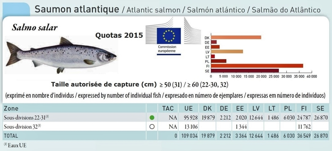 Quotas saumon atlantique 2015 fileminimizer