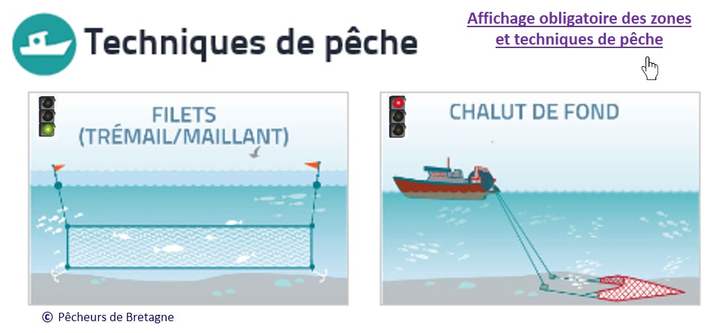 Tech peche turbot 2015